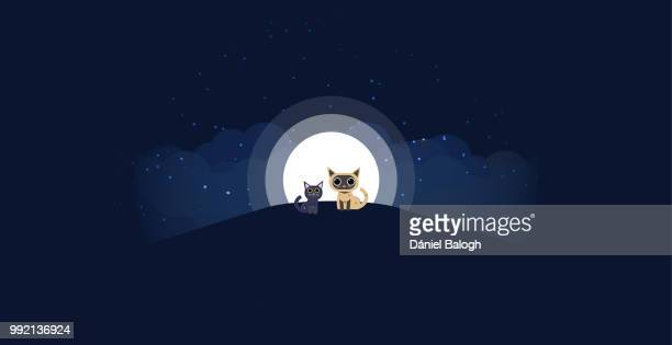 Cats sitting on a hill background of the moonlight. All in a single layer. Vector illustration. Black and cream cat on hilltop with moon in a starry night in the background.