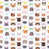 Cats vector heads illustration seamless pattern