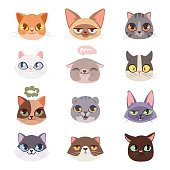 Cats vector heads illustration
