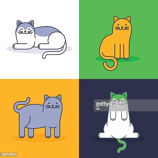 Gatos.