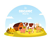 Cattle and farm animals at farm paddock