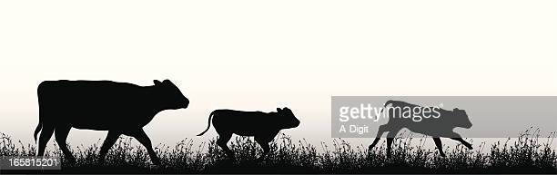 Cattle Vector Silhouette