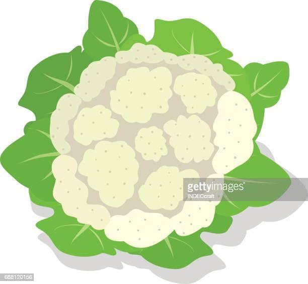 cauliflower - cauliflower stock illustrations, clip art, cartoons, & icons