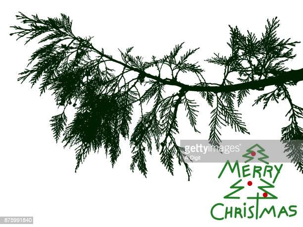 cedar branch christmas wishes - coniferous tree stock illustrations, clip art, cartoons, & icons