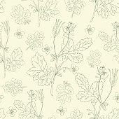 Celandine flower hand drawn graphic vector botanical illustration, seamless floral pattern, ink sketch isolated on light background, medical plant, line art for card, natural medicine, design cosmetic
