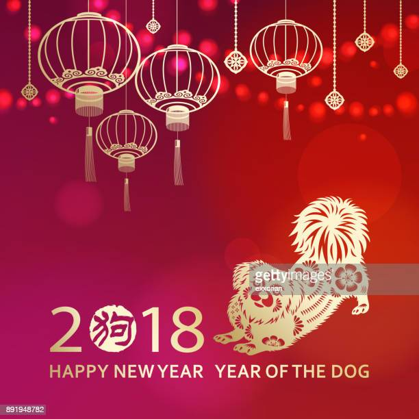 celebrate chinese new year with dog - chinese new year stock illustrations, clip art, cartoons, & icons