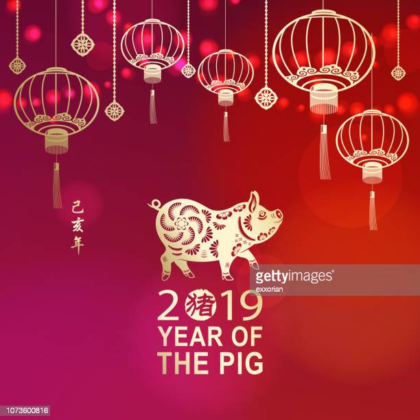 celebrate chinese new year with pig - chinese new year stock illustrations, clip art, cartoons, & icons