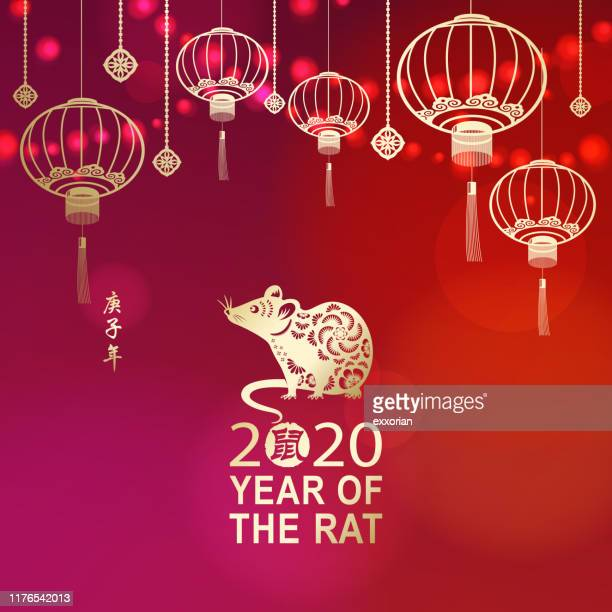 celebrate chinese new year with rat - mammal stock illustrations