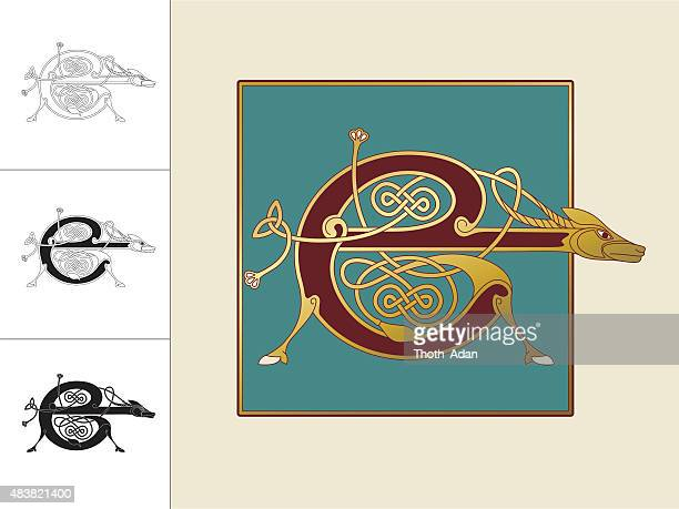 celtic initial: letter e with animal and endless knots - book of kells stock illustrations