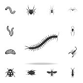 centipede. Detailed set of insects items icons. Premium quality graphic design. One of the collection icons for websites, web design, mobile app
