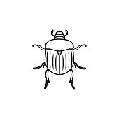 Chafer icon. Insect world elements icon. Premium quality graphic design icon. Simple line icon for websites, web design, mobile app, info graphics