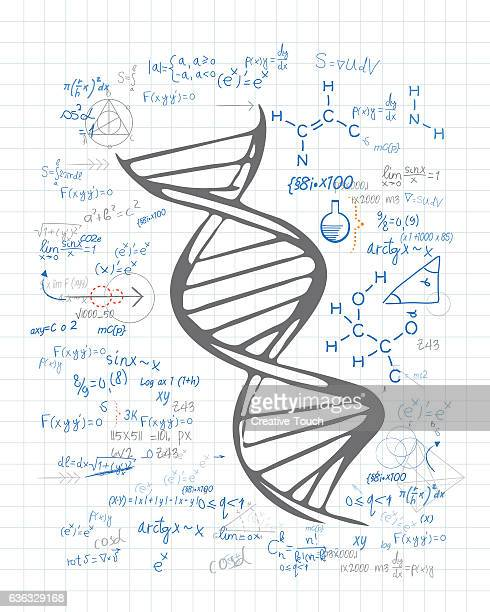 DNA Chain drawing on the paper
