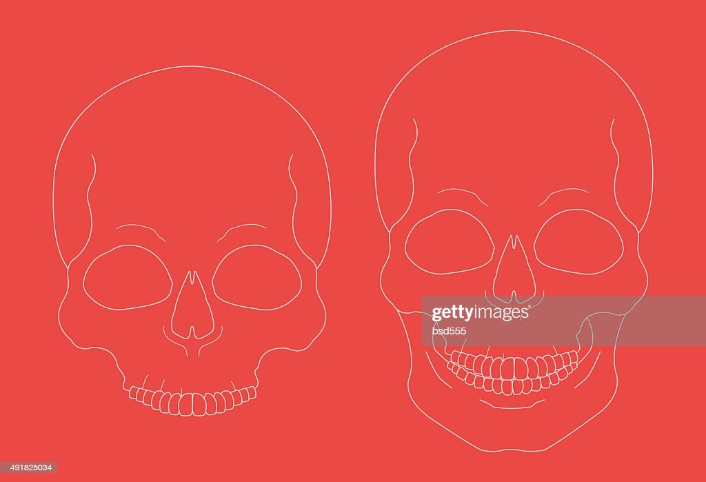 Chalk skull vector clip art