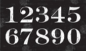 Chalky Numbers, Vector