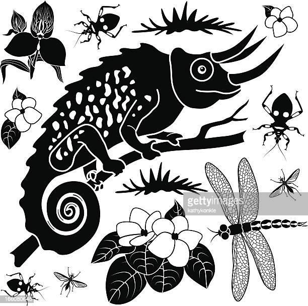 chameleon design elements - assassin bug stock illustrations, clip art, cartoons, & icons