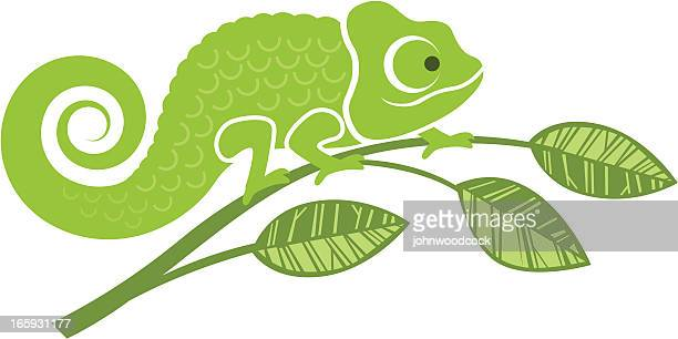 chameleon illustration - chameleon stock illustrations, clip art, cartoons, & icons