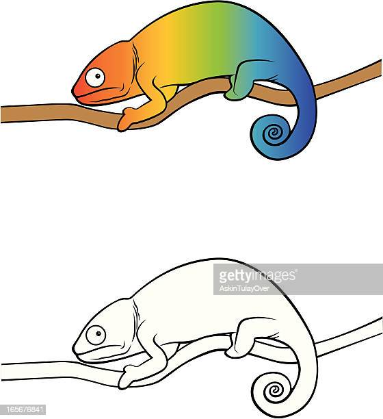 chameleon - chameleon stock illustrations, clip art, cartoons, & icons