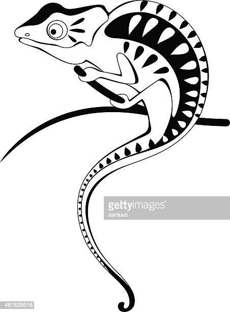 ilustrações, clipart, desenhos animados e ícones de camaleão - réptil