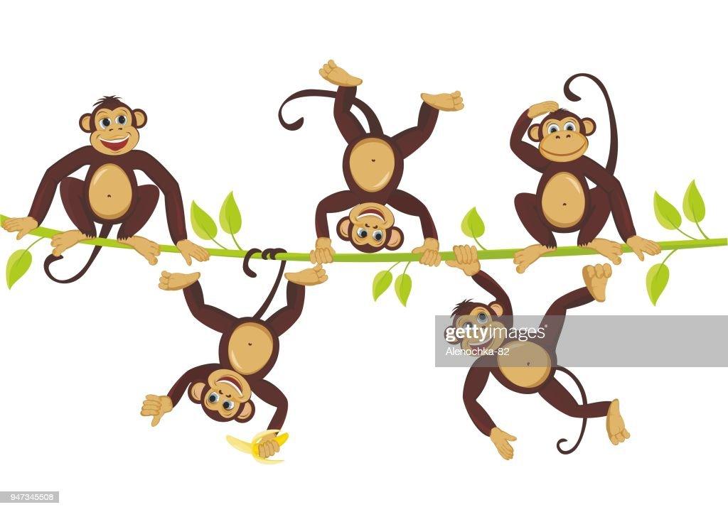 Cheerful monkeys frolic on a vine Cheerful monkeys frolic on a vine
