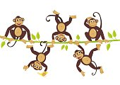 Cheerful monkeys frolic on a vine Cheerful monkeys frolic on a vine