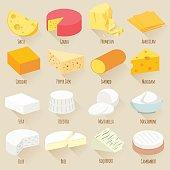 Cheese varieties. Flat design vector icon set.