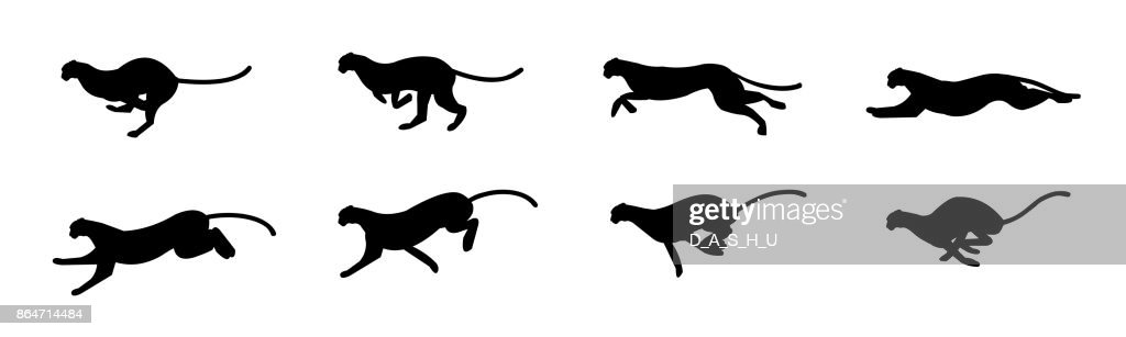 Cheetah run cycle