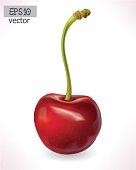 Cherry 3d vector. Realistic illustration.