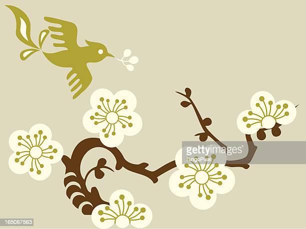illustrations, cliparts, dessins animés et icônes de & bird cherry blossom - cerisier japonais
