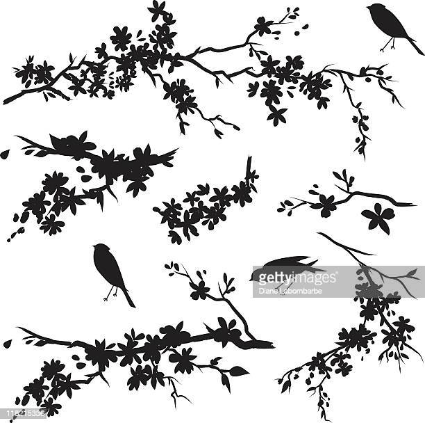 cherry blossom branches in bloom & birds black silhouette - flowering trees stock illustrations, clip art, cartoons, & icons