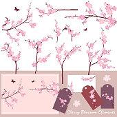 Cherry Blossom (Sakura) Elements