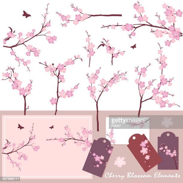 cherry blossom (sakura) elements - cherry blossom stock illustrations, clip art, cartoons, & icons