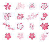 Cherry blossom japanese sakura vector icon set