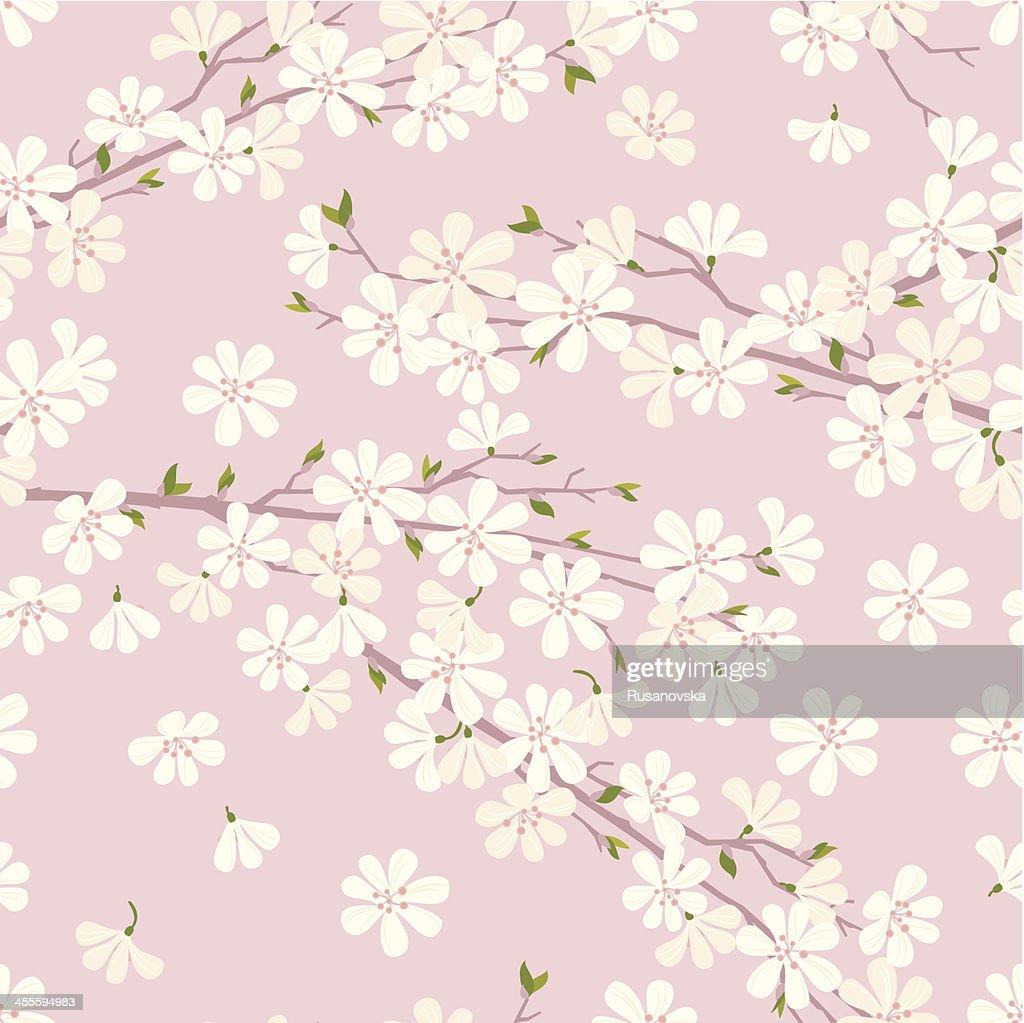 Cherry Blossom Pattern : Vector Art