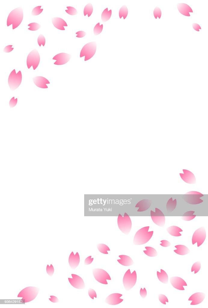 Cherry blossom postcard 3