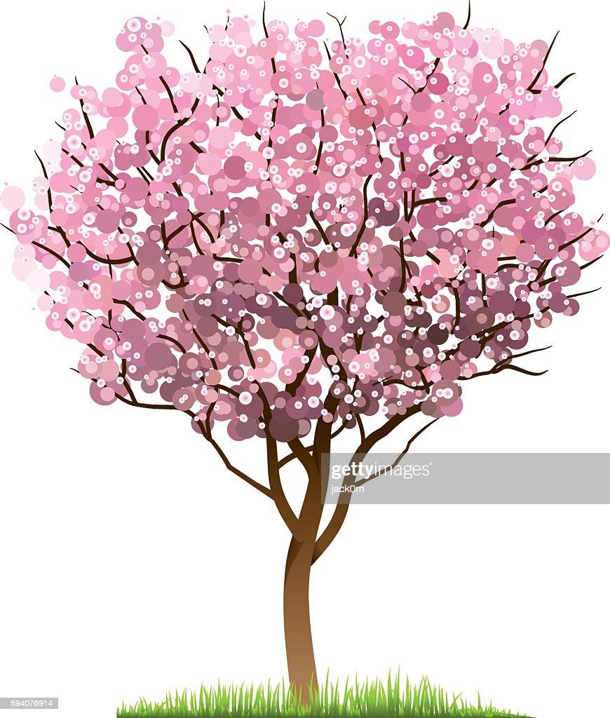 Cherry Blossom Tree : stock illustration