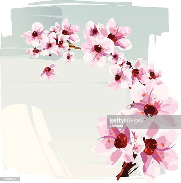 cherry blossom - flowering trees stock illustrations, clip art, cartoons, & icons
