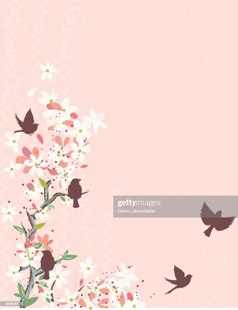 Cherry Blossoms And Sparrows