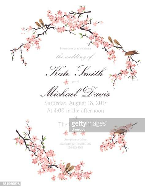 Cherry Blossom Vector Art And Graphics | Getty Images