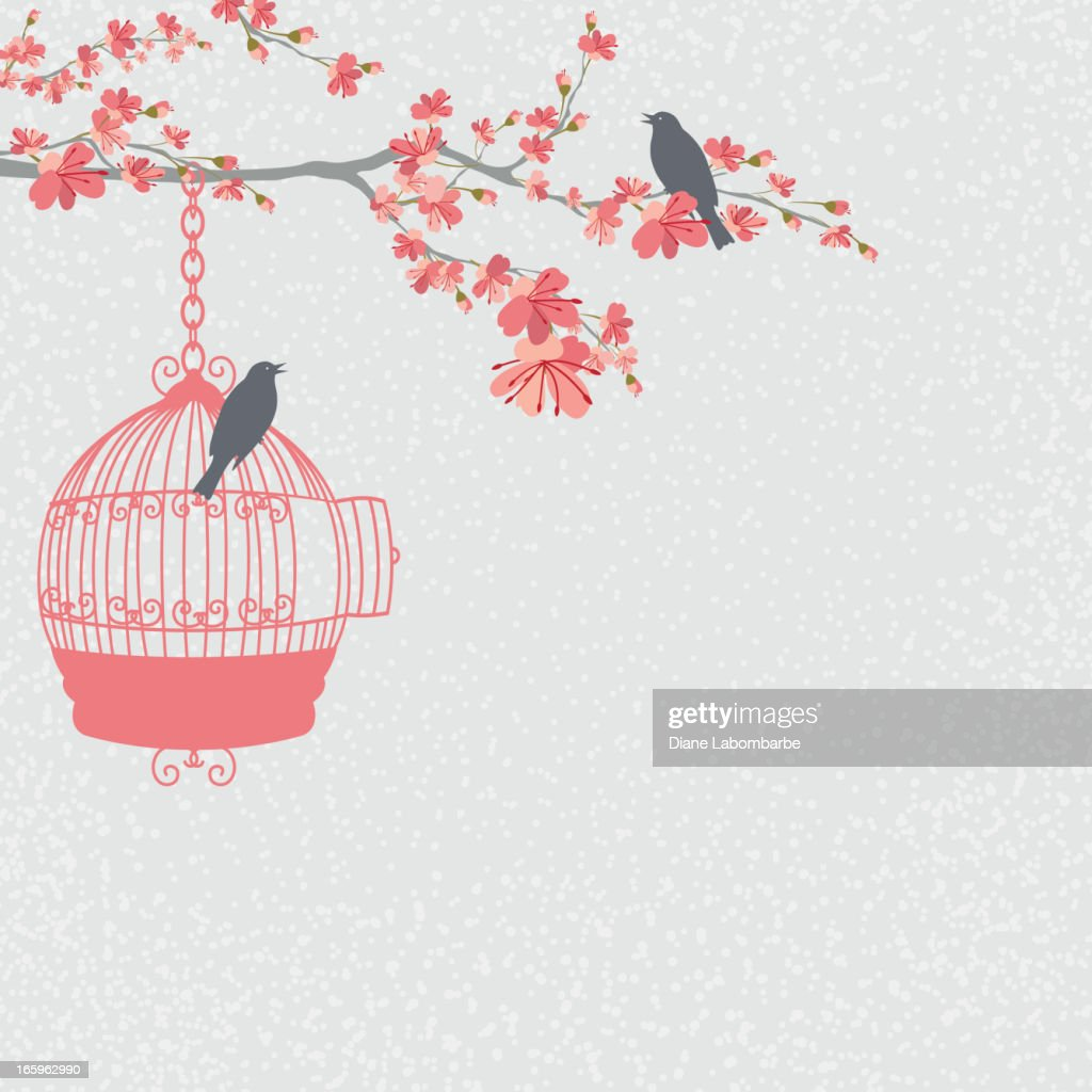 Cherry Blossoms Branch and Birds