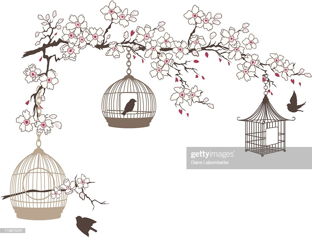 Cherry Blossoms Branch With Three Bird Cages Hanging : stock illustration