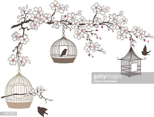 cherry blossoms branch with three bird cages hanging - birdcage stock illustrations, clip art, cartoons, & icons