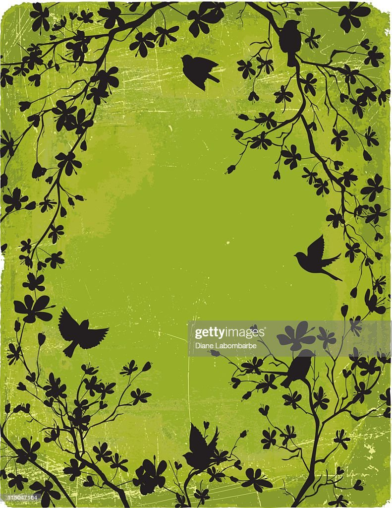 Cherry Blossoms Branches & Birds Frame Silhouettes on Green Background