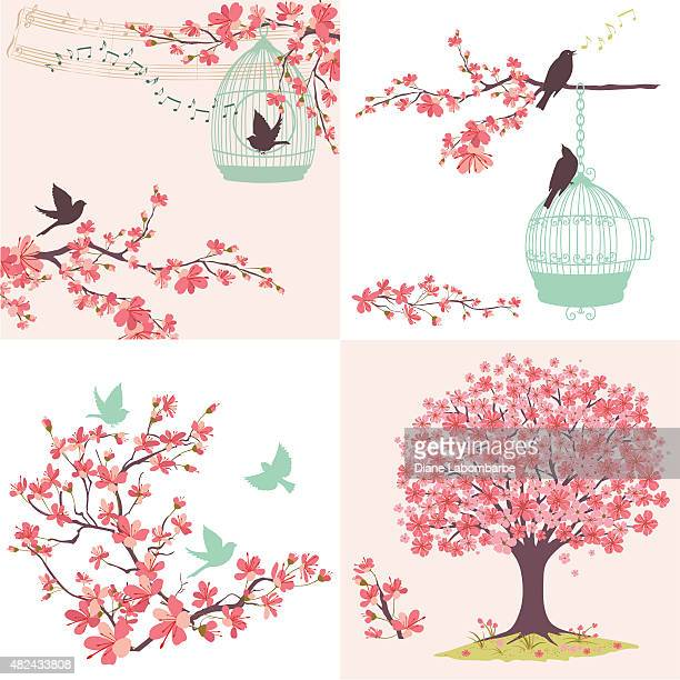 cherry blossoms sakura and birds ornaments set - flowering trees stock illustrations, clip art, cartoons, & icons