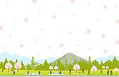 Cherry blossoms scenery