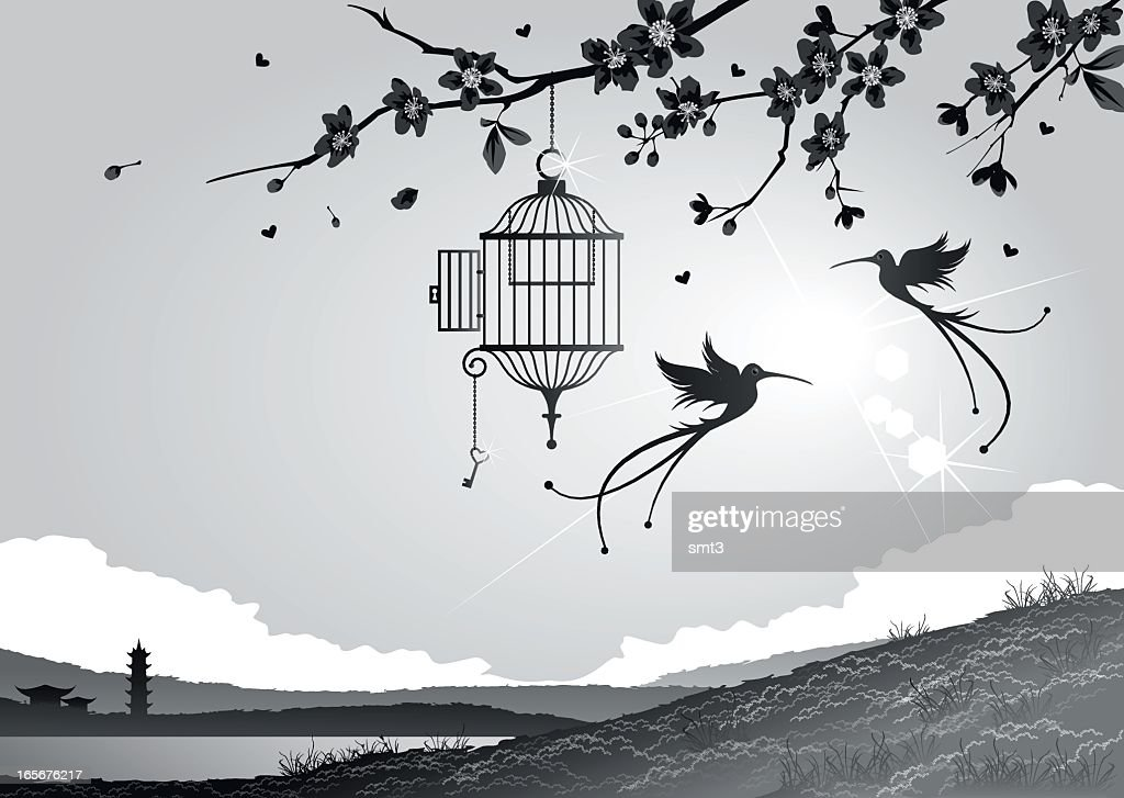 Cherry blossoms with birds and cage : stock illustration