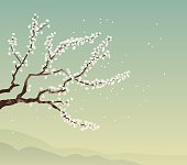Cherry tree and landscape