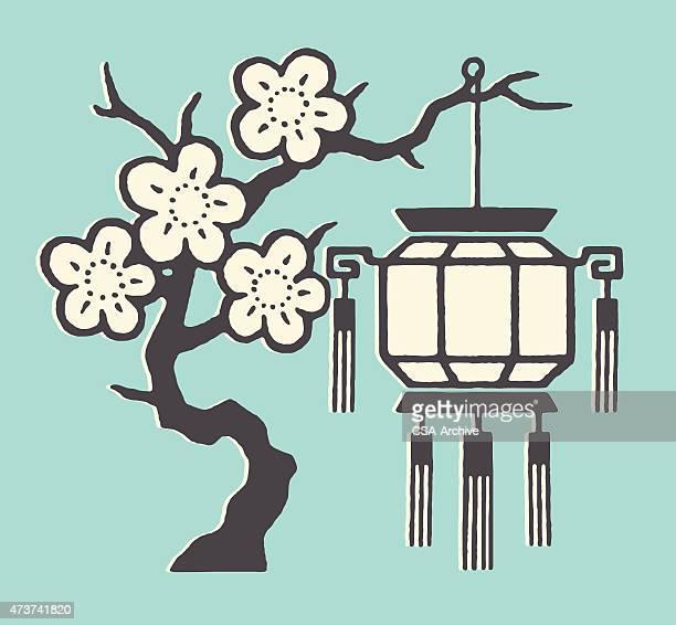 illustrations, cliparts, dessins animés et icônes de cerisier et lanterne - cerisier japonais
