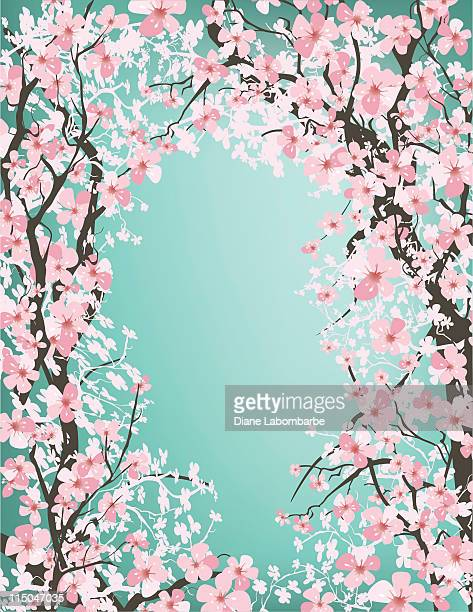 cherry tree branches forming a framed background on teal green - cherry blossom stock illustrations, clip art, cartoons, & icons