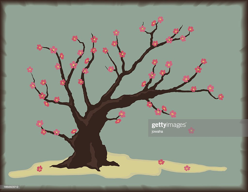 Cherry Tree with Blossoms