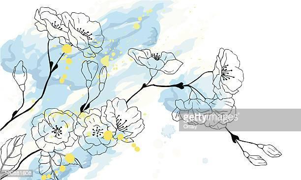 illustrazioni stock, clip art, cartoni animati e icone di tendenza di ciliegia disegno ad acquerello - fiori